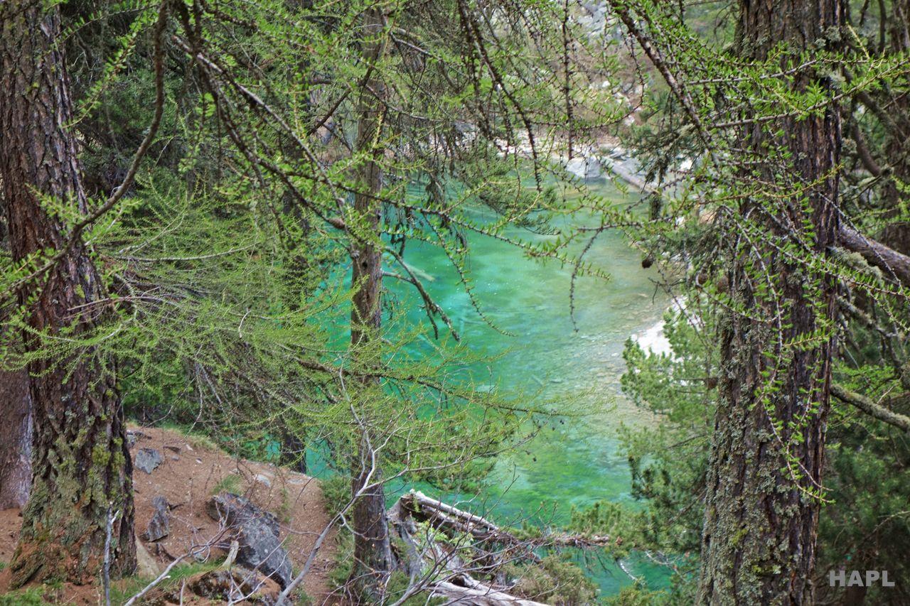 lac-vert-hautes-alpes-balades-familiales