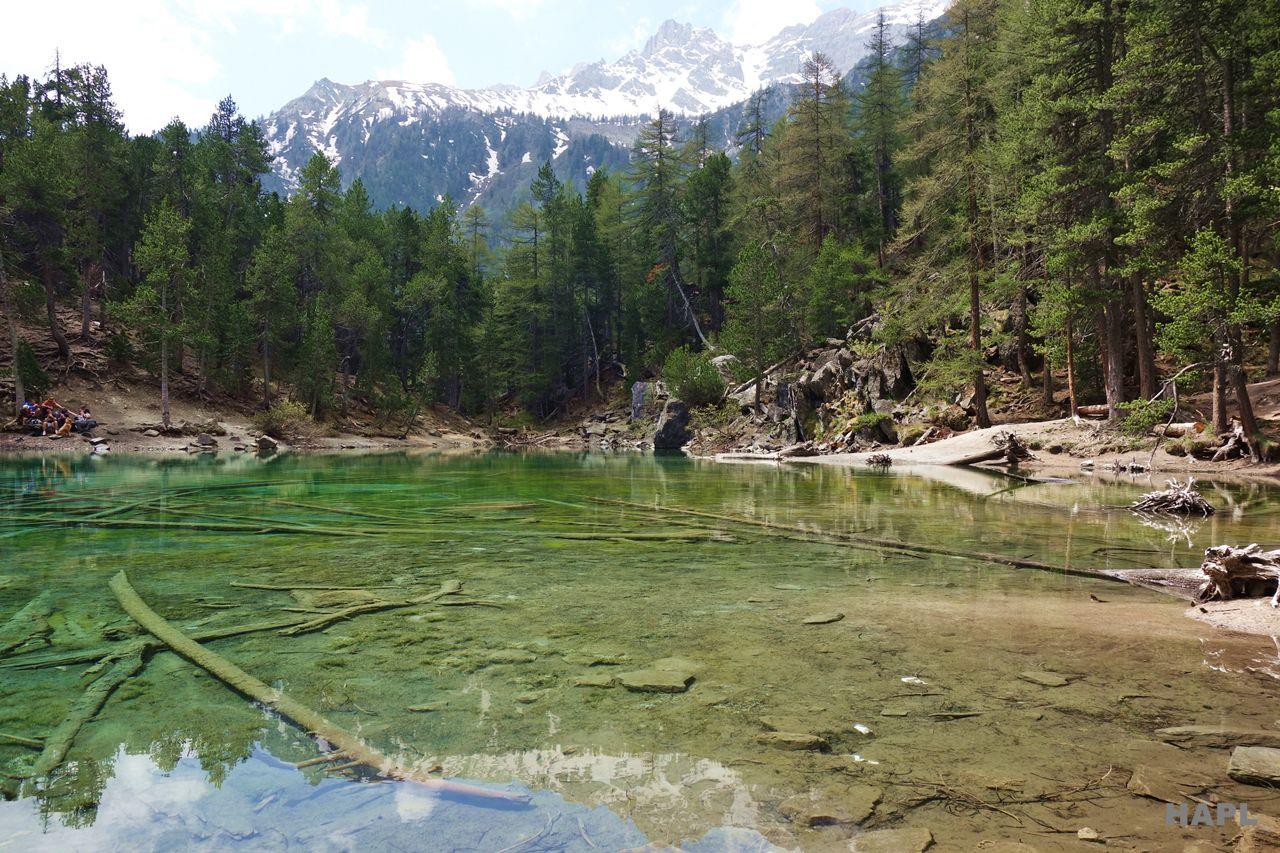promenade-lac-vert-avec-enfant-hautes-alpes